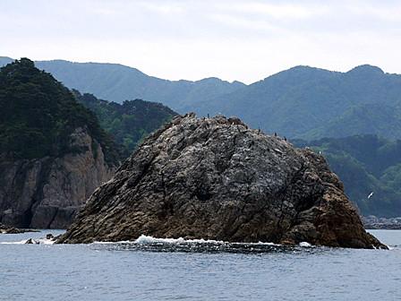 大島~笹川流れ