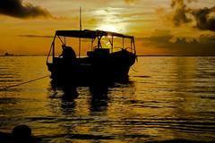 Good Morning Bali....