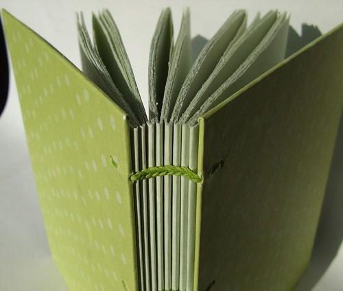 green polka dot book