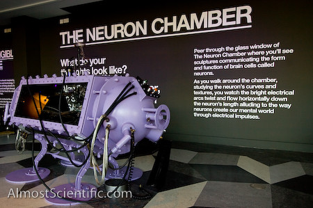 Neuron_Chamber_Almost_Scientific (2 of 10)