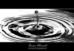 Better Viewed in Thumbnail :) (Anas Ahmad) Tags: bw water drop droplet anas anasahmad anasahmadphotography