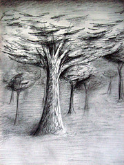 There's an Old Oak Tree (Eraser Assassin) Tags: old trees tree leaves landscape sketch oak scenery drawing charcoal oaktree