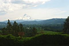 Mount Hood (bunbunlife) Tags: oregon point panoramic mount hood orchards