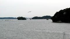 IMG_3329 (foreverstudent) Tags: japan matsushima miyagi