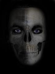 Magnera Human Skull 2