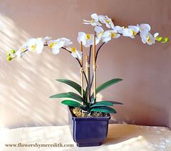 Silk flower arrangement three white phalaenopsis