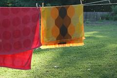 On the line (trosper31) Tags: summer vintage towels