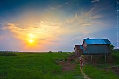 another dusk... (mostakim timur) Tags: houses sunset green field canon eos golden evening is kiss dusk tired rays farmer 1855mm char efs chor timur x3 500d madaripur ti1 borishal mostakim mostakimtimur mdmoazzemmostakim moazzem