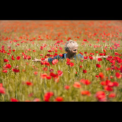 If I am dreaming let me never awake, If I am awake let me never sleep. (** Nico **) Tags: summer woman flower love nature canon joy happiness poppies gettyimages canonef85mmf12liiusm