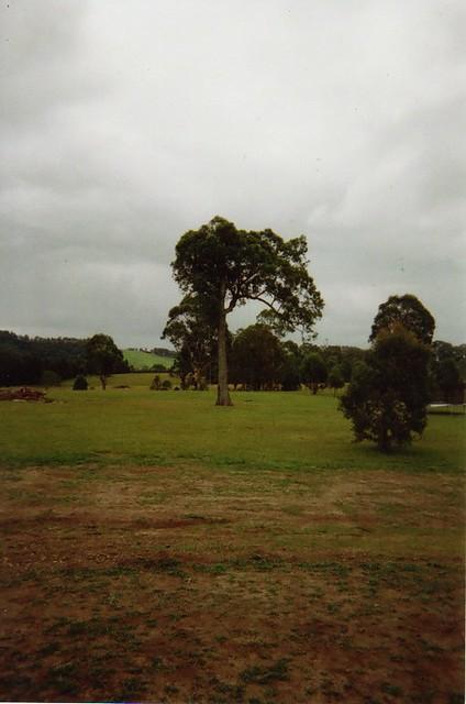 AMLP farm