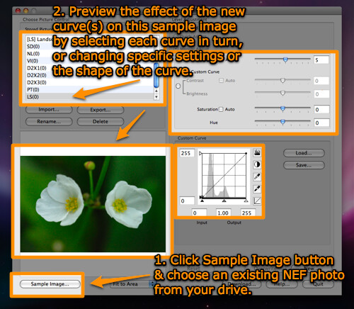Preview the effect of curves and settings on the sample NEF image