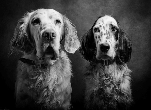 Grouse and Zoe in BW