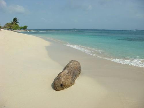 Porvenir Island - Panama. February 2009.