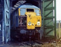 Class 31 31007 Stratford  26/10/77 (Stapleton Road) Tags: scrap stratford class31 dieselloco railwayphotography railbluebritishrailways