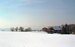 farm (Riex) Tags: winter snow film zeiss landscape switzerland farm hiver rangefinder neige agfa paysage ikon ferme planar vaud agfavista agfacolor hivernal mmount agfaphoto scenehivernale zmmount
