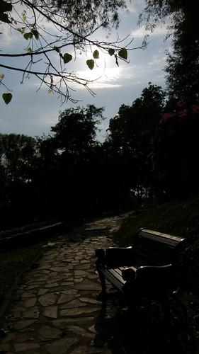 54.塔山(Wat Phnom)的日落