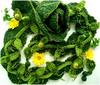 Folhas, cachecol de crochê (Lidia Luz) Tags: scarf leaf handmade crochet felt feltro folha cachecol crochê lidialuz