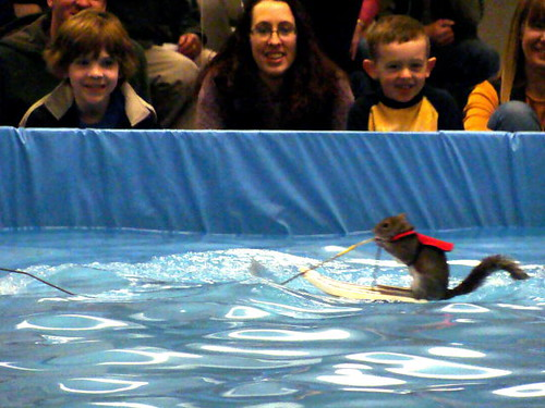 Twiggy the Water-Skiing Squirrel.