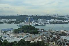 DSC_9734 (Slow's Image) Tags: nikon singapore d300 2470