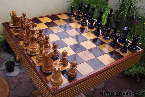 chess pieces set on wooden folding board