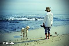 Man's Best Friends (tinefis) Tags: ocean sea newzealand dog beach dogs water 35mm sand australia olympus adelaide filmcamera om southaustralia zuiko kamera nzl australianimages olympusom4ti fujifilm200 beachphotography filmkamera zuikolense australianphotography aelaide australianphotos zuikolenses photograpyofaustralia imagesofaustralia photosofaustralia olympusomzuiko200mmf40