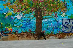 strano modo... (seiciis) Tags: paris birds nuvole upsidedown tennis cielo albero murales parigi pallina atestaingiù