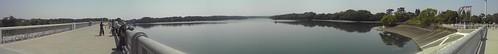多摩湖堤防から