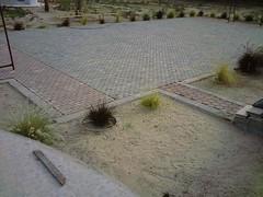 صورة0023 (lateefkuwait) Tags: في تاريخ المزرعة 452009