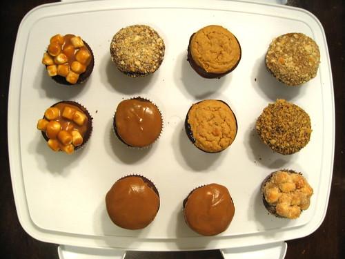 Cupcake Test Run
