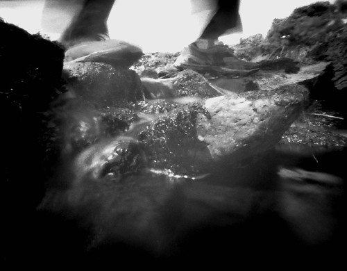 Stepping stones at Glenburn pinhole image