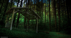 Stop_Haunting_Me_Everyday_by_Vlue (Photo Extremist) Tags: light green nature grass forest dark woods gazebo spooky hdr