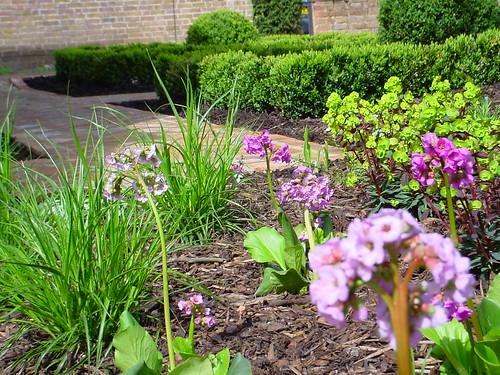 Landscaping Prestbury - Formal Garden  Image 34