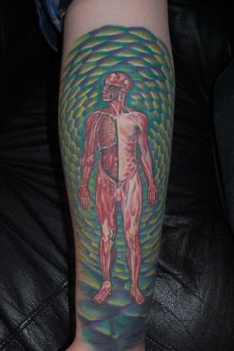 anatomy tattoo