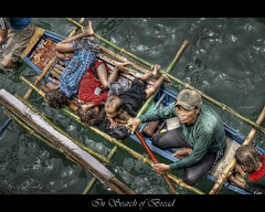 In Search of Bread (gahenty) Tags: poverty travel sea people bread search philippines jesus poor olympus bible hungry jpg jpeg hdr quezon luzon verse e330 badjao zd 1454mm 1xp badjaos seapeople aplusphoto gahenty philippinephotographicsociety kristianongpinoy