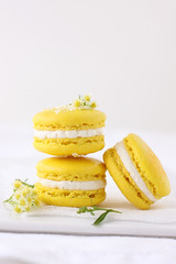 meyer lemon macarons (cannelle-vanille) Tags: winter friends yellow lemoncurd buttercream macarons meyerlemon neverreallylikedbrightmacaronsuntilnow floridacitrusseason