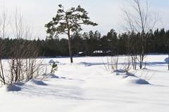 Vinterferie i Høland -09 031
