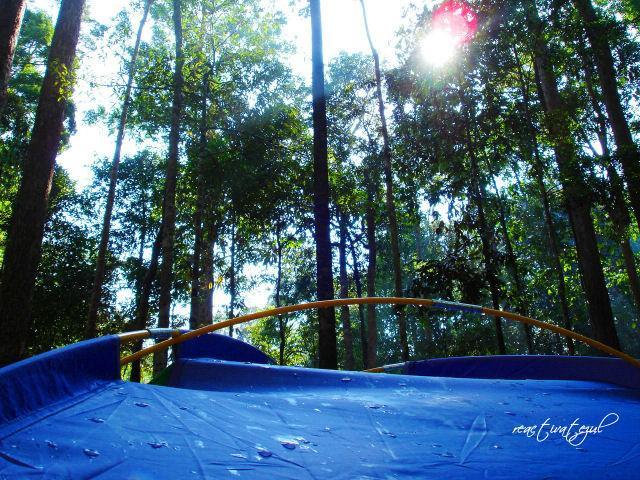 khemah-kitaorg-yg-dikelilingi-hutan-hijau