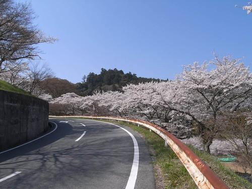 09-04-10【桜】@談山神社-01