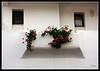 Albufeira (Doenjo) Tags: flores portugal geotagged algarve balcón albufeira canoneos450d doenjo retofs1