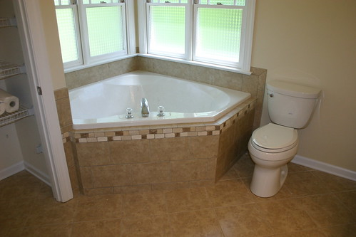 Tub and Toilet