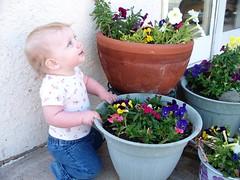 Gardening 2 (Ludeman99) Tags: eowynlouisebitner
