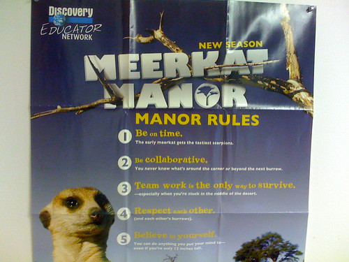 Meerkat Manor Rules