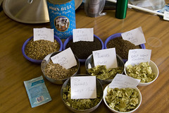 Otter Dark Stout - Extract Brew Number 4 (pdtnc) Tags: beer dark grain ingredients otter copper stockpot yeast homebrew homebrewing stout hops malt fuggles fv goldings bigpan fermentationvessel eastkentgolding safales04