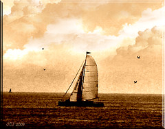 SAILING (fantartsy JJ *2013 year of LOVE!*) Tags: california flowers vacation beauty photoshop landscape pier frames gulls palmtrees oceanside sailboats dragondagger thesuperbmasterpiece multimegashot zuzkasfaves heavenlycaptures