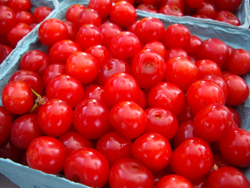 Sour Cherries from Gillogly Orchard