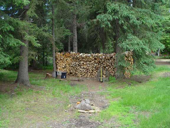 woodpile5.jpg
