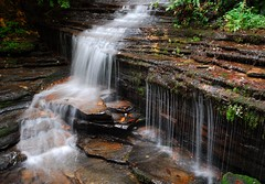 Angel Falls (davidwilliamreed) Tags: county nature water angel georgia landscape waterfall moss nikon rocks falls d200 ferns rabun slowwater