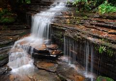 Angel Falls (davidwilliamreed) Tags: county nature water angel georgia landscape waterfall moss nikon rocks falls d200 ferns rabun slowwater