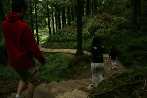 Taiwan 2009 - Alishan Mountain by you.