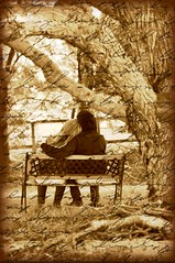 I found her diary underneath a tree... (Ann McLeod Images) Tags: tree love home sarah bread michae